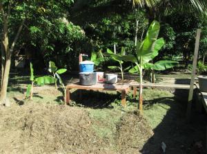 banana circle and washing station