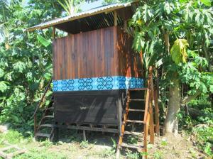 beautiful latrine