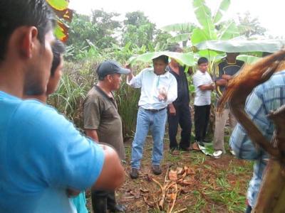 Visita a la plantación de Piri Piri de Amistad