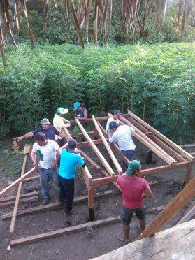 training carpenters