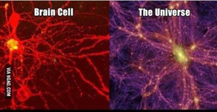 brain-cell-and-universe-cool-photo